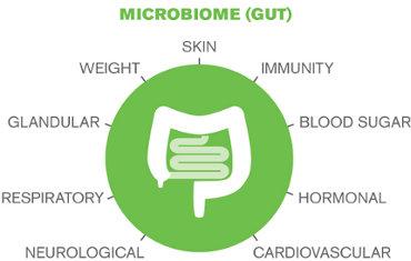 microbiome370